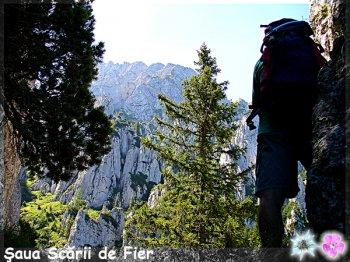 1_SAUA_SCARII_DE_FIER