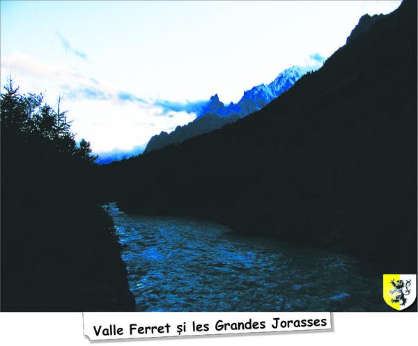 valle_Ferret1