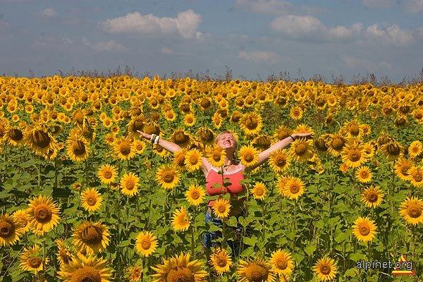 Eu si Soarele... Floarea Soarelui