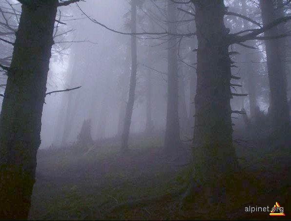 Ceaţă...