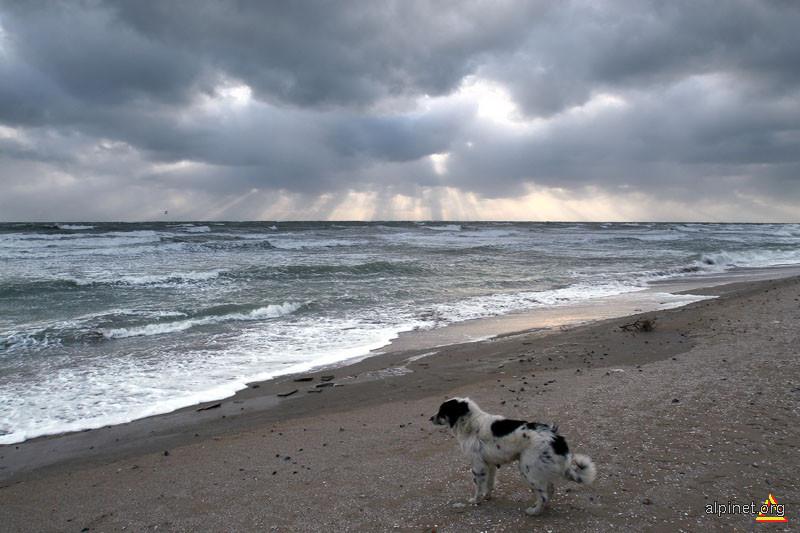 Marea Neagră, iarna