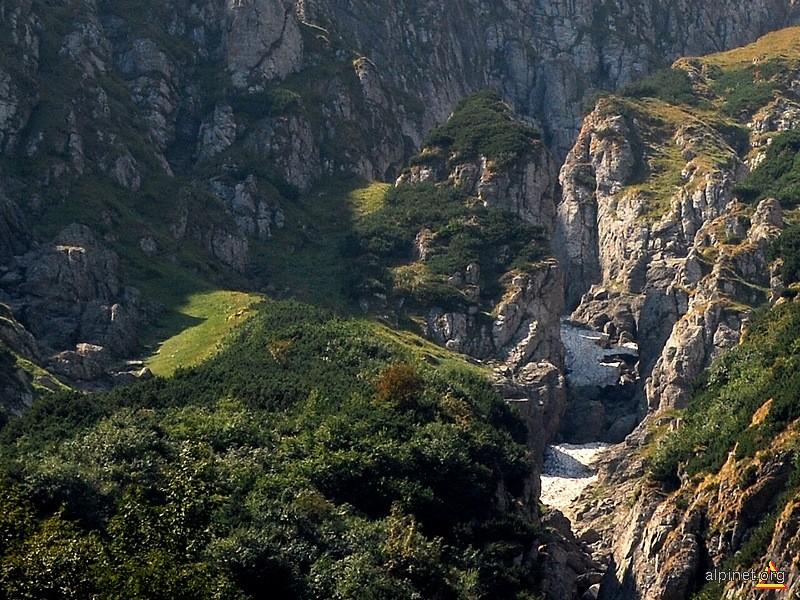 Valea Bucşoiului