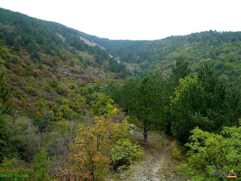 Autumnala