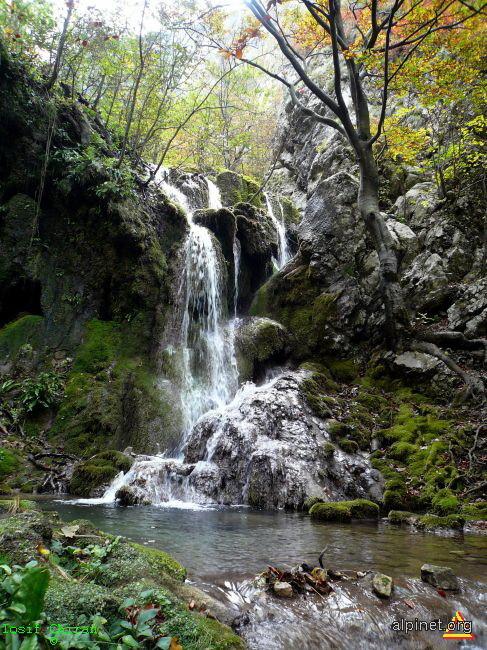 Prima cascada de la izvoare-Beusnita