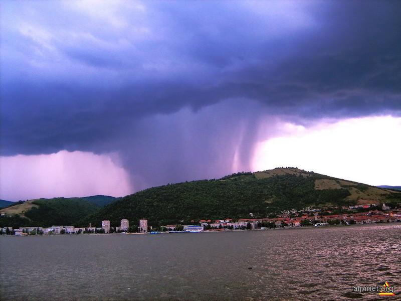 Vine furtuna