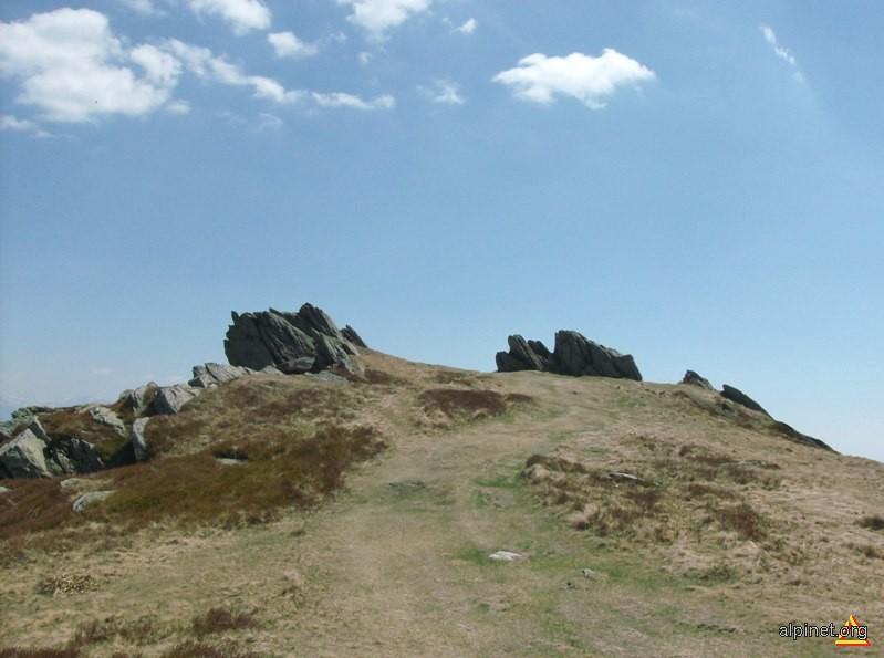 Vf. Semenic (1446 m alt.)