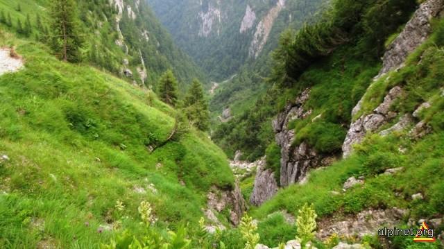 Valea jepilor- Jepii mici