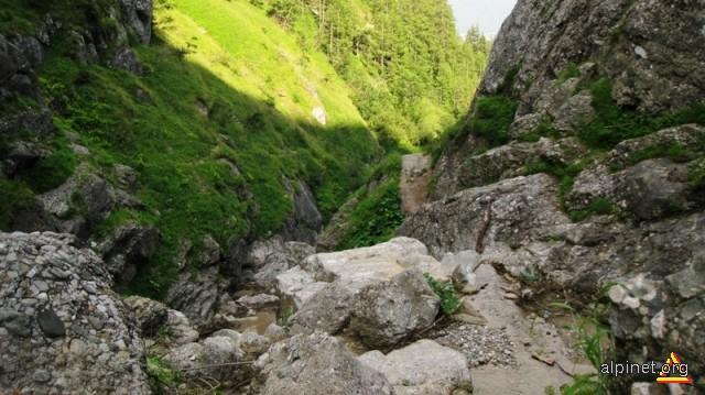 Valea jepilor- Jepii mici 3