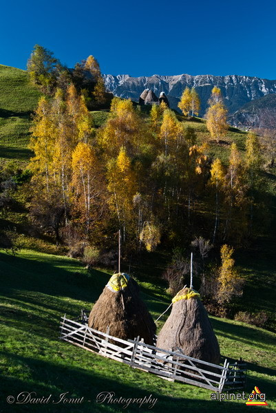 Landscape de toamna