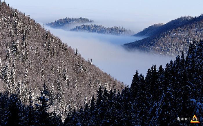 Valea Nucşoarei