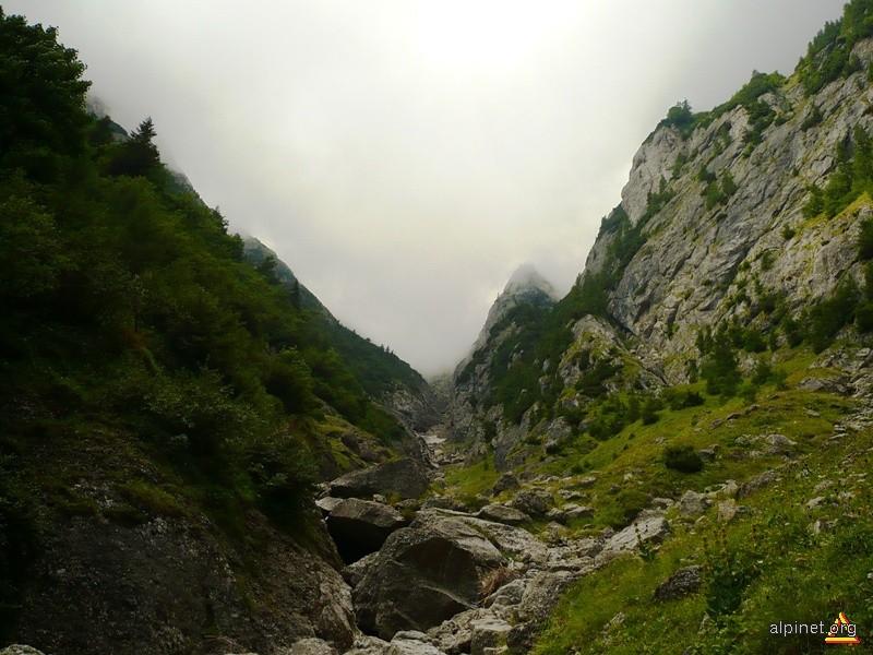 Valea Alba fara