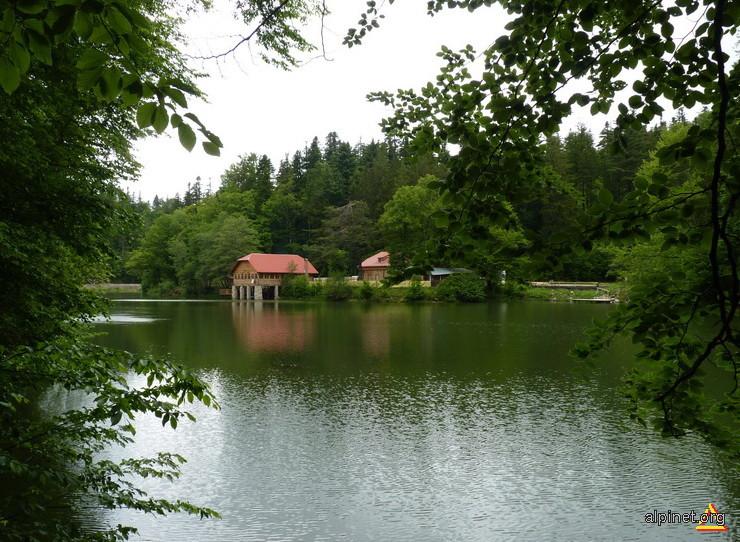 Lacul Buhui si cantonul silvic Buhui