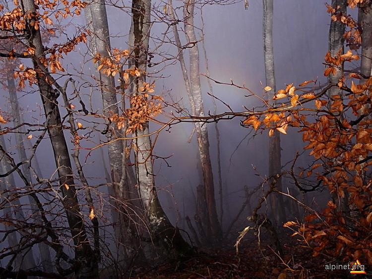Spectrul din Brocken