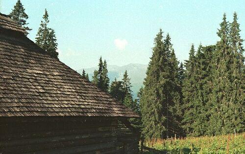 Stina din Varful Manastirii