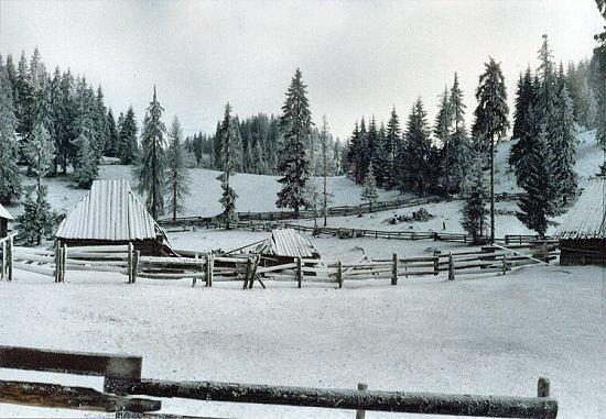 Iarna în Apuseni