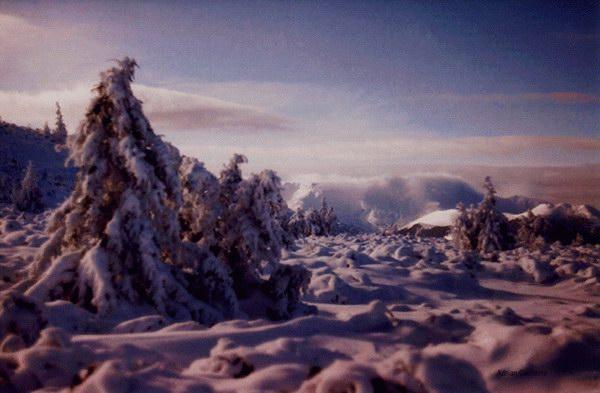 zăpada Călimanilor