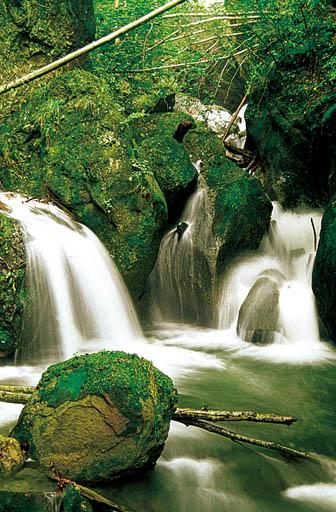 Cascada Cheia
