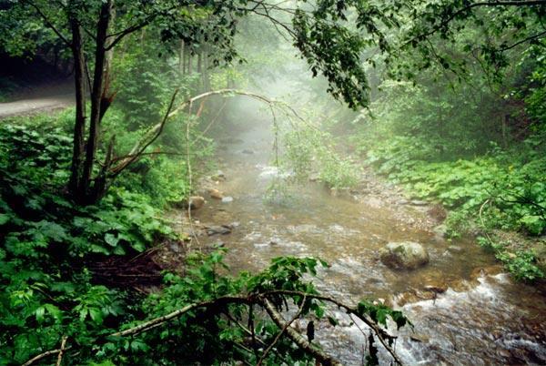 Valea Cheia după ploaie