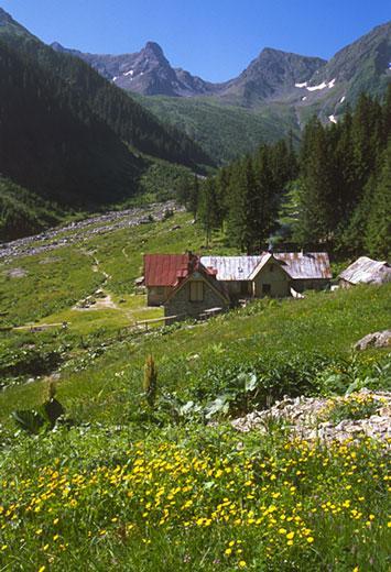 Valea Simbetei