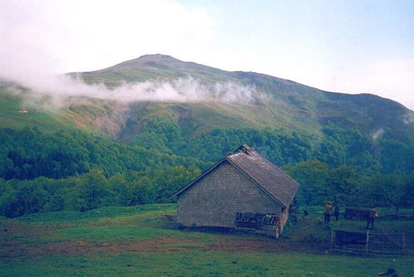 Vârful Grohotiş (1768 m alt.)