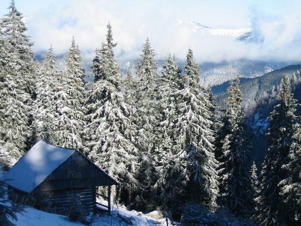 Iarna in Godeanu