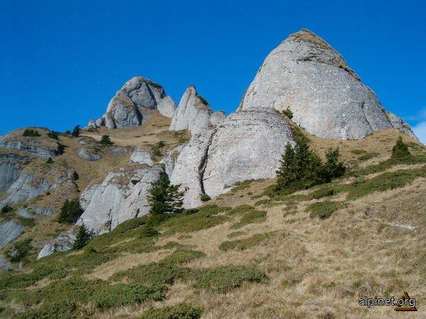 Zona înaltă a Ciucaşului-3