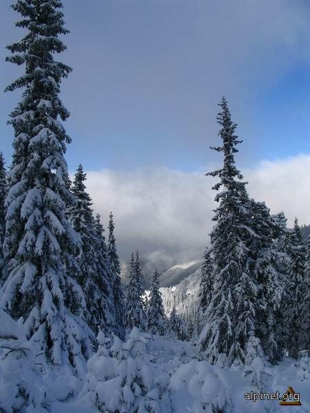 Iarna la munte 5