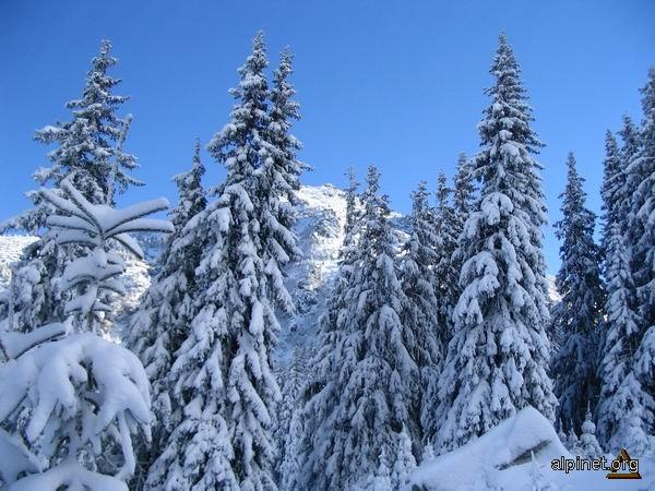 Iarna la munte 4