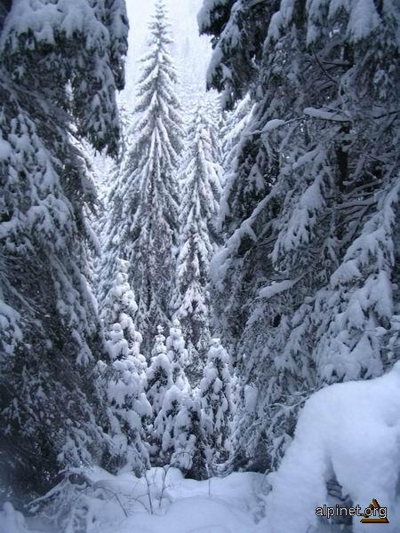 Iarna la munte 2