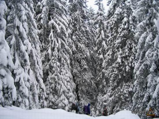 Iarna la munte 1
