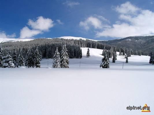 Winter in Bucegi