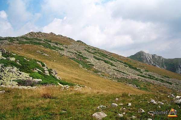 Muntele Arjana