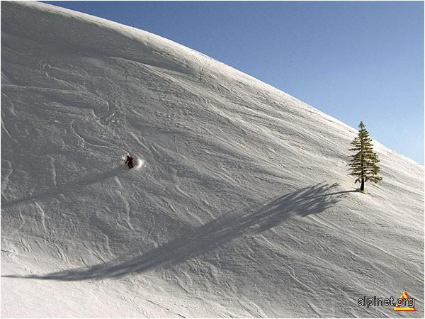 Skiorul...