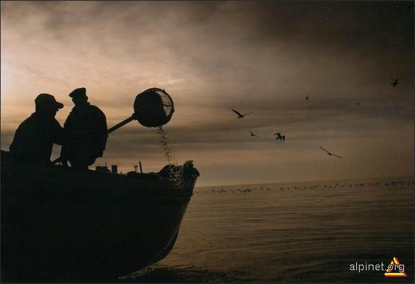 Oamenii Mării