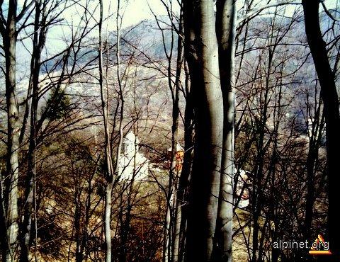 Schitul Lespezi - ascuns printre copaci