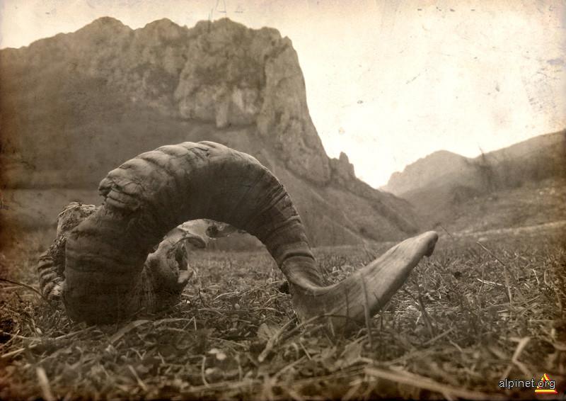 El Condor Passa...
