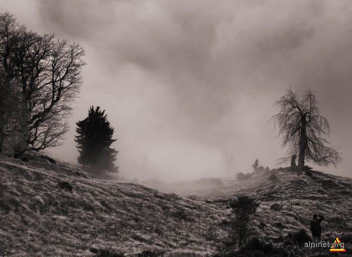 Valul de ceaţă