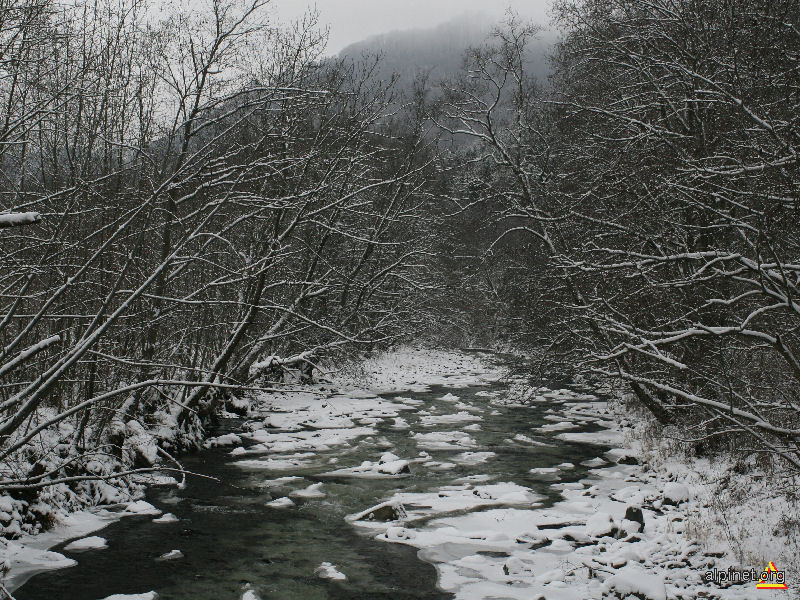 Valea Săcuieului