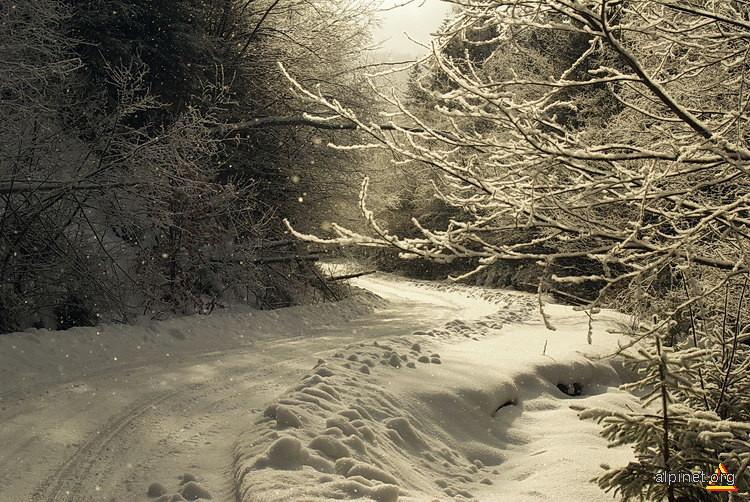 Drumul spre iarnă