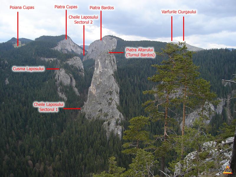 Valea Laposului