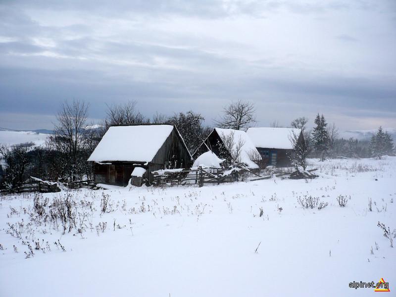 Iarna pe uliţă.