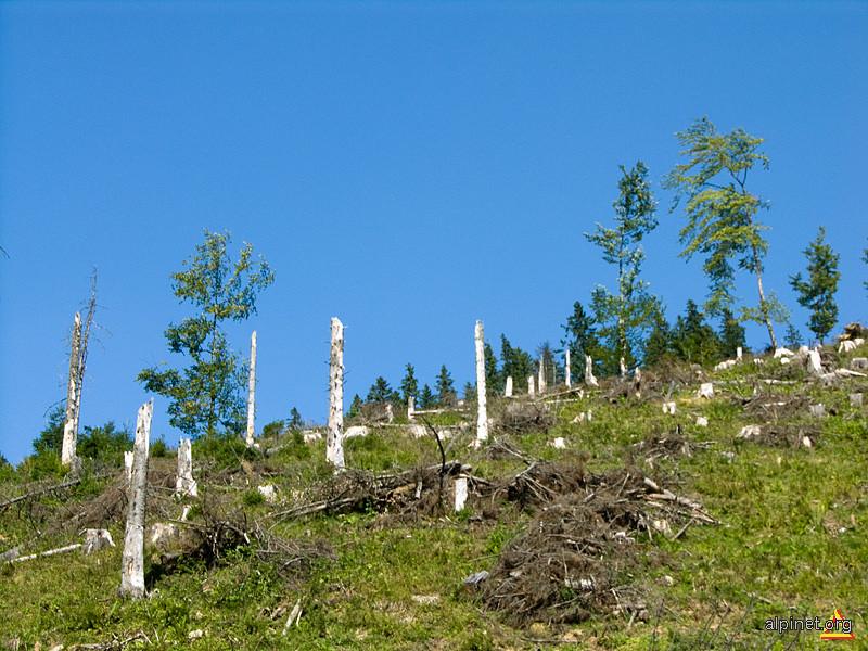 Peisaj cu arie naturală protejată