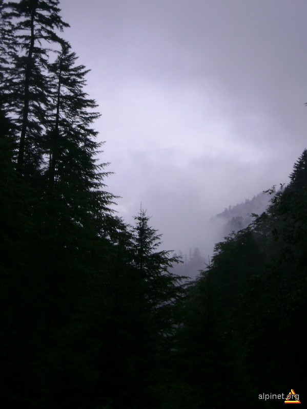 In the mist of the hills by the river of the fogpalace
