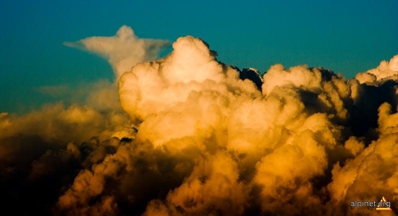Un nor ca oricare altul