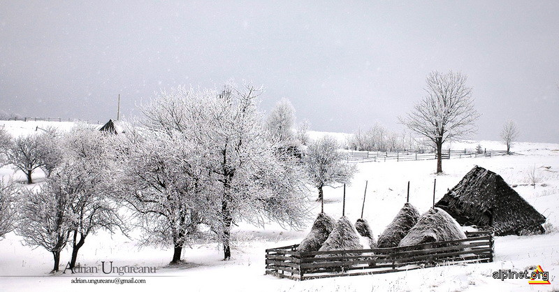 Te uită cum ninge, Decembre...