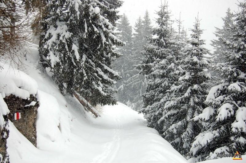 traseu iarna