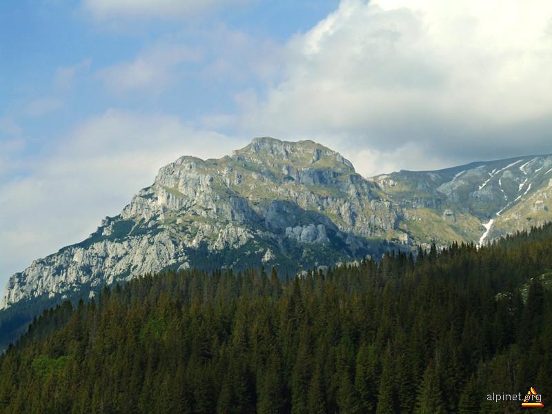 Muntele Gaura