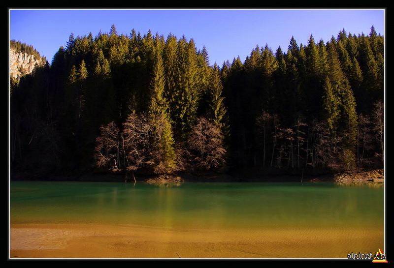 Întoarcerea la laguna albastră