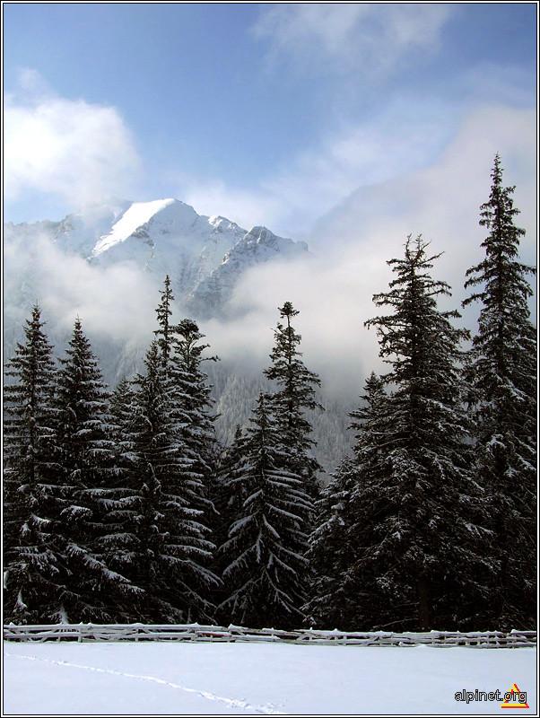 Tablou de iarnă #3