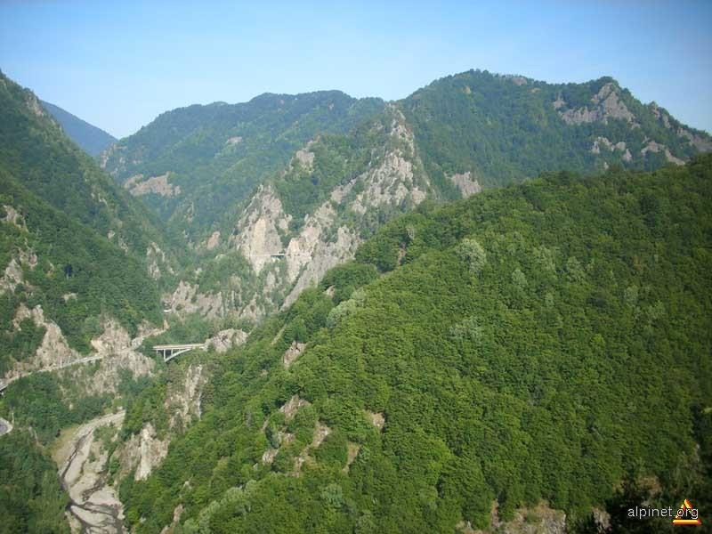 Drumul alpineţ